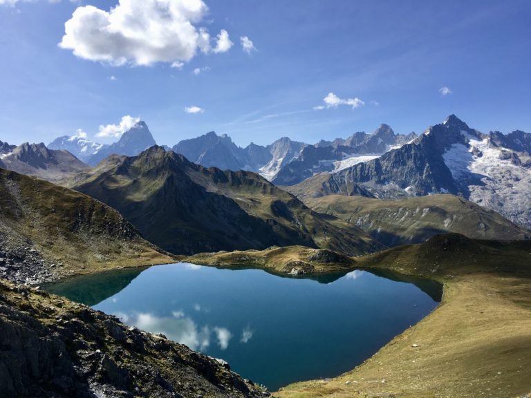 Read more about the article VAL FERRET