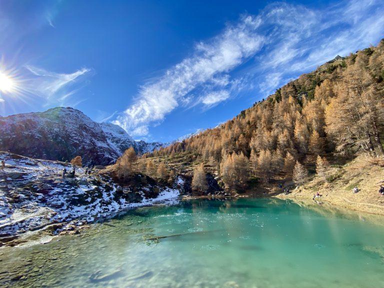 2021 Rando sur le mélèze arbre de lumière et l'arole à la Forclaz dans le Val d'Hérens avec Inès Thoms de Zenaventures 4