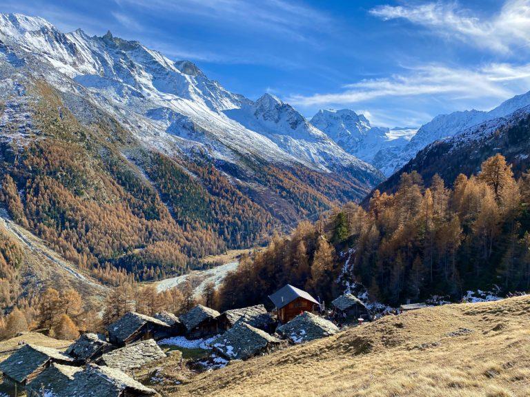 2021 Randonnée sur le Mélèze arbre de lumière et l'arole à la Forclaz dans le Val d'Hérens avec Inès Thoms de Zenaventures 3
